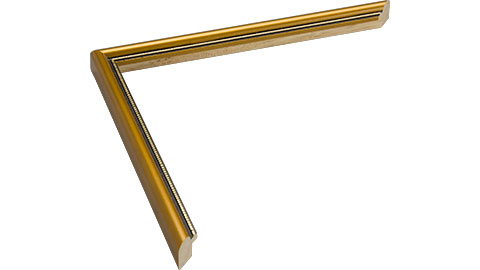13mm Wide, Gold Wood Paint Frame, 8x10