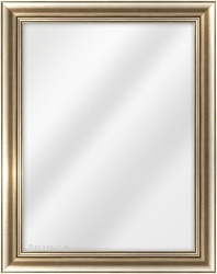 Framed Mirror made from a 40mm wide moulding, cushion shaped, and champagne silver in colour.