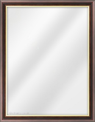 Framed Mirror made from a 25mm wide moulding, spoon shaped, and mahogany (with gold inner edge) in colour.