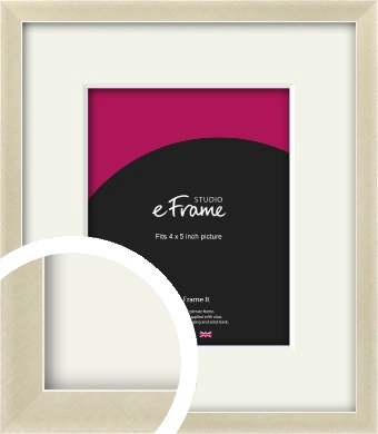 Flat Champagne Silver Picture Frame & Mount, 4x5