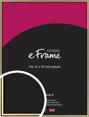 Lustrous Gold Picture Frame, 12x16