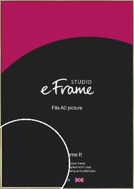 Lustrous Gold Picture Frame, A0 (841x1189mm) (VRMP-A032-A0)