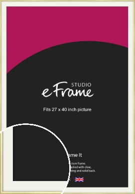 Modern Flawless Gold Picture Frame & Mount, 27x40