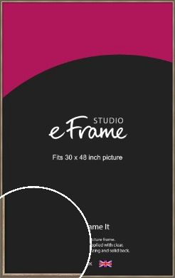 Cushioned Brushed Bronze / Copper Picture Frame, 30x48