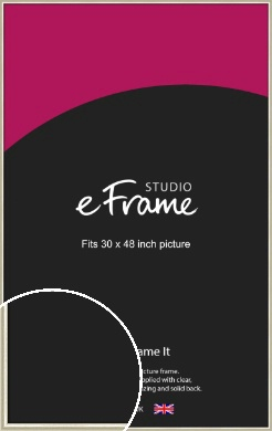 Brushed Champagne Gold & Silver Picture Frame, 30x48