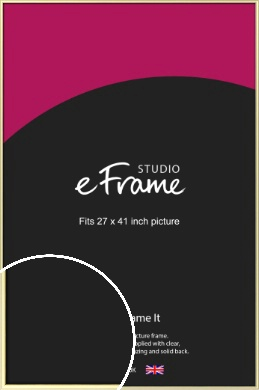 Soft Gold Picture Frame, 27x41