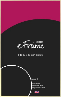 Soft Gold Picture Frame, 30x48