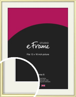 Soft Gold Picture Frame & Mount, 12x16