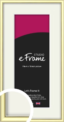 Soft Gold Picture Frame & Mount, 4x10