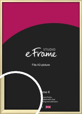 Refined Gold Picture Frame, A3 (297x420mm) (VRMP-A044-A3)