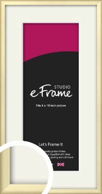Refined Gold Picture Frame & Mount, 4x10