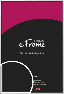 Frosted Chrome Silver Picture Frame, 16x24