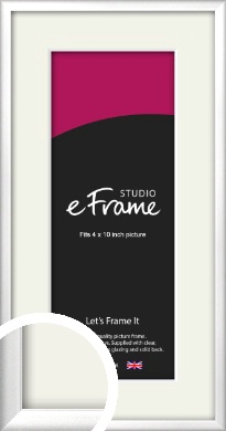Frosted Chrome Silver Picture Frame & Mount, 4x10
