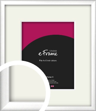 Frosted Chrome Silver Picture Frame & Mount, 4x5