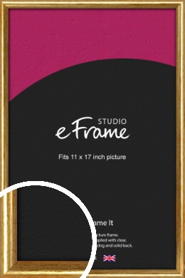 Antique Gold Picture Frame, 11x17