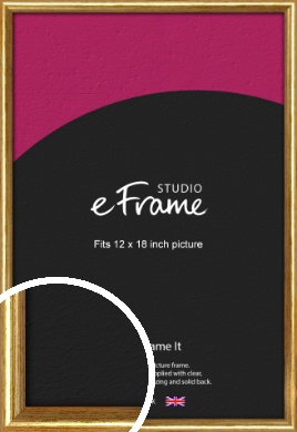 Antique Gold Picture Frame, 12x18