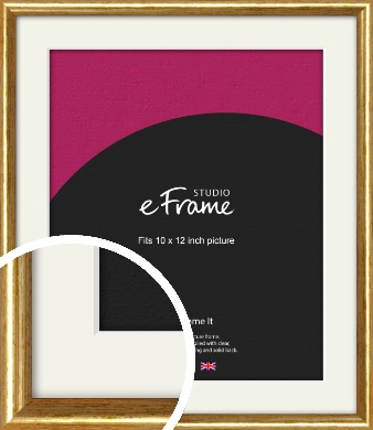 Antique Gold Picture Frame & Mount, 10x12