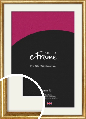 Antique Gold Picture Frame & Mount, 10x15
