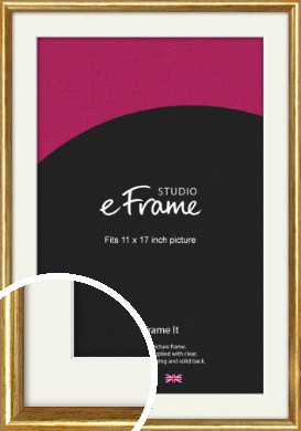 Antique Gold Picture Frame & Mount, 11x17