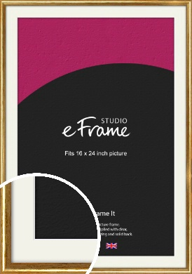 Antique Gold Picture Frame & Mount, 16x24