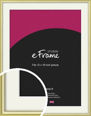 Contemporary Gold Picture Frame & Mount, 12x16