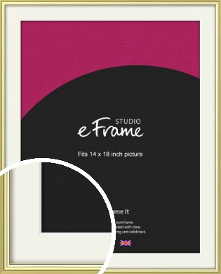 Contemporary Gold Picture Frame & Mount, 14x18