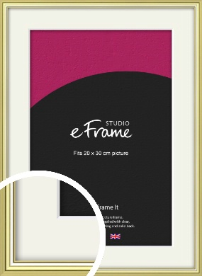 Contemporary Gold Picture Frame & Mount, 20x30cm (8x12
