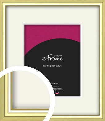 Contemporary Gold Picture Frame & Mount, 4x5