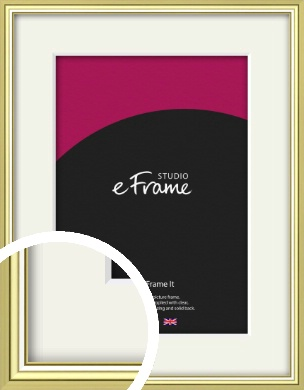 Contemporary Gold Picture Frame & Mount (VRMP-A038-M)