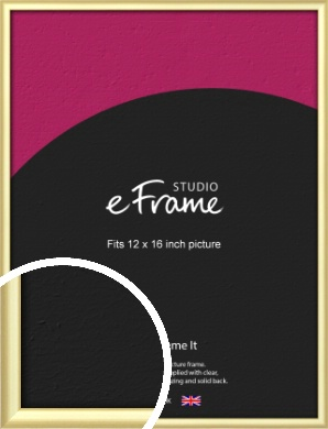 Glamorous Modern Gold Picture Frame, 12x16