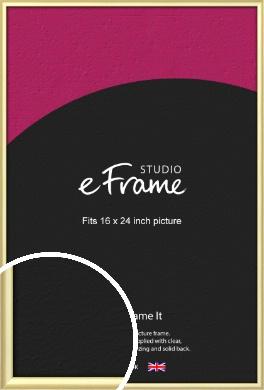 Glamorous Modern Gold Picture Frame, 16x24