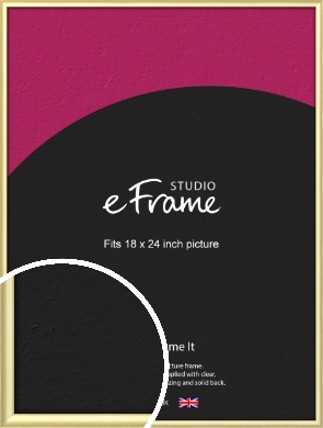 Glamorous Modern Gold Picture Frame, 18x24