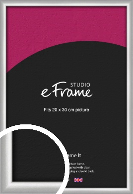 Curved Silver Picture Frame, 20x30cm (8x12