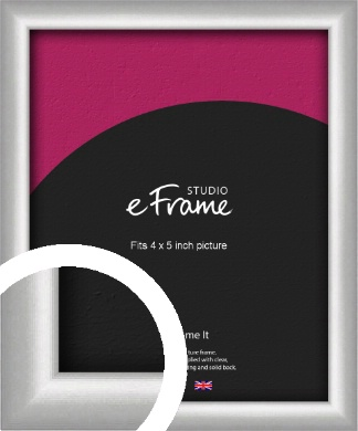 Curved Silver Picture Frame, 4x5