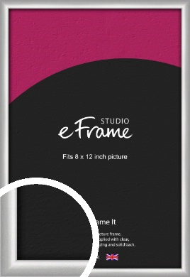 Curved Silver Picture Frame, 8x12