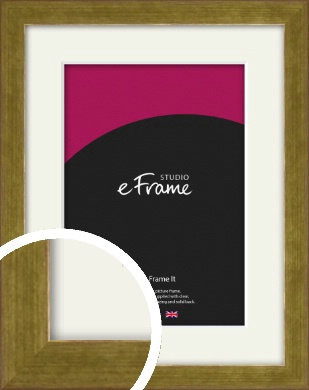 Luxe Gold Picture Frame & Mount (VRMP-901-M)