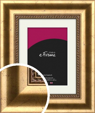 Sculpted Gold Picture Frame & Mount (VRMP-516-M)