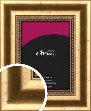 Sculpted Gold Picture Frame (VRMP-516)