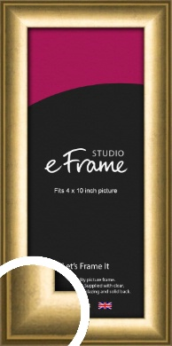 Classic Gold Picture Frame, 4x10