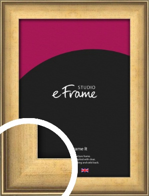 Timeless Gold Picture Frame (VRMP-238)