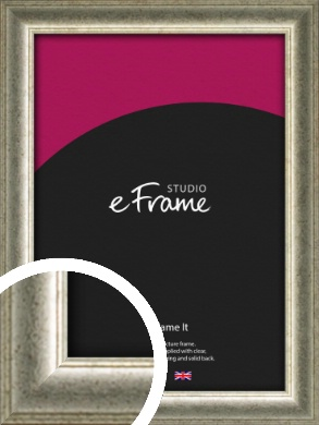 Traditional Tinted Leaf Silver Picture Frame (VRMP-983)