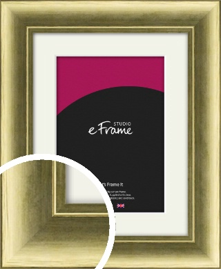 Luxe Gold Picture Frame & Mount (VRMP-1001-M)