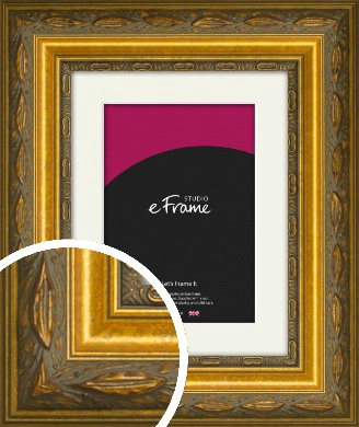 Theatrical Gold Picture Frame & Mount (VRMP-1069-M)