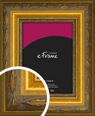 Theatrical Gold Picture Frame (VRMP-1069)