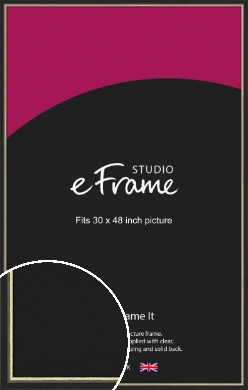 Gold Accent Black Picture Frame, 30x48