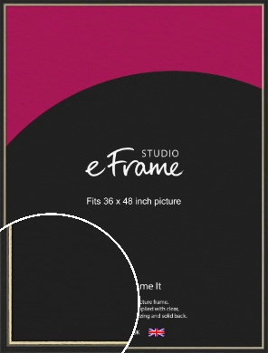 Gold Accent Black Picture Frame, 36x48