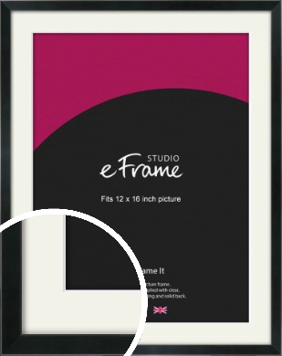 Simple Narrow Black Picture Frame & Mount, 12x16