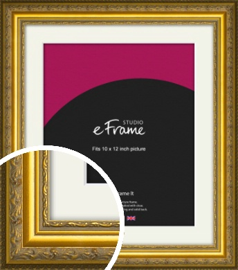 Ornate Gold Picture Frame & Mount, 10x12