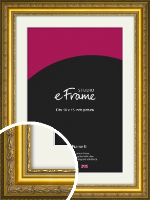 Ornate Gold Picture Frame & Mount, 10x15