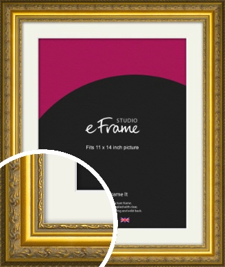 Ornate Gold Picture Frame & Mount, 11x14